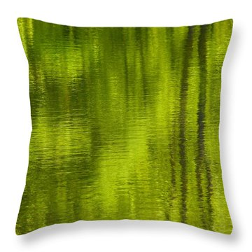Deep Summer Reflection Throw Pillow