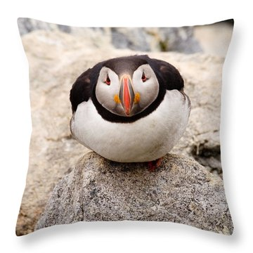 Deep Thinker Throw Pillow