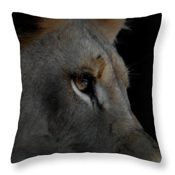 Deep Thought Throw Pillow by Ernie Echols