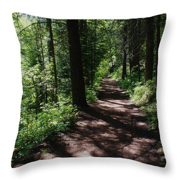 Throw Pillow featuring the photograph Deep Woods Road by Ben Upham III