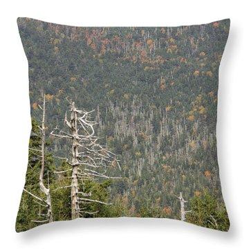 Deeper Into Forest Throw Pillow