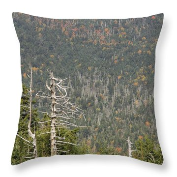 Deeper Into Forest Throw Pillow
