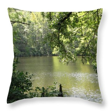 Throw Pillow featuring the photograph Deepwood Retreat by John Glass