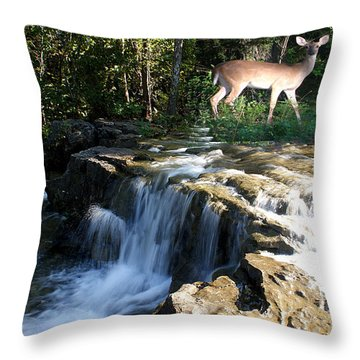 Throw Pillow featuring the photograph Deer At The Falls by Rick Friedle