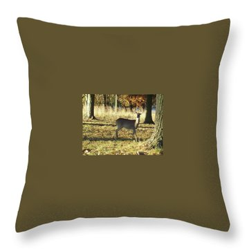 Deer At Valley Forge Throw Pillow