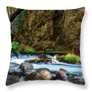 Deer Creek Throw Pillow