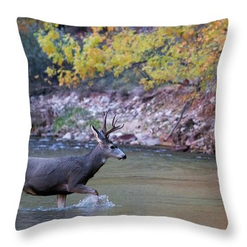 Deer Crossing River Throw Pillow