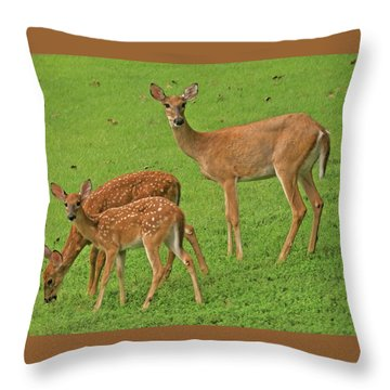 Deer Family Throw Pillow