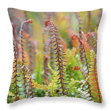 Blechnum Penna-marina Throw Pillow