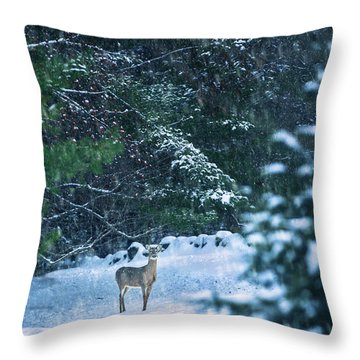 Deer In A Snowy Glade Throw Pillow