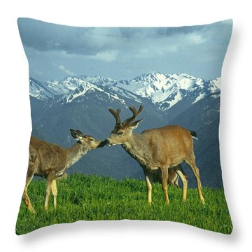 Ma-181-deer In Love  Throw Pillow