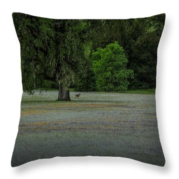 Deer In Meadow Throw Pillow
