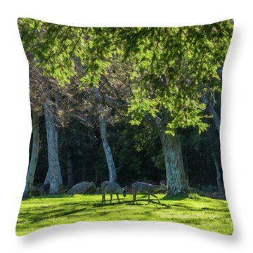 Deer In The Afternoon Sun Throw Pillow