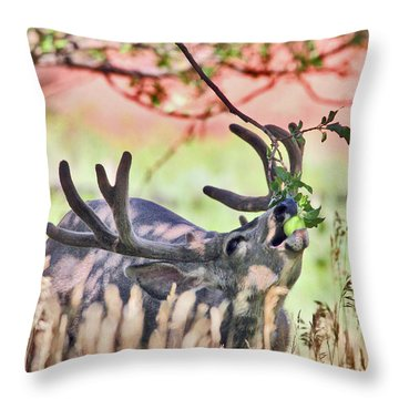 Deer In The Orchard Throw Pillow
