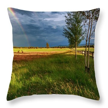 Throw Pillow featuring the photograph Deer Under The Rainbow by Cat Connor