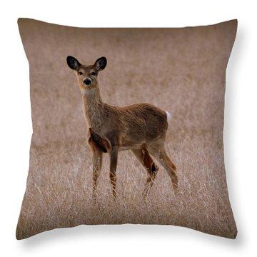 Deerfield Throw Pillow