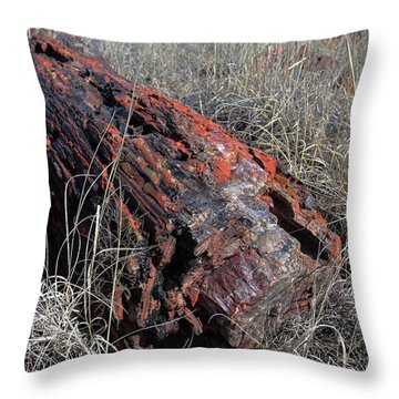 Defying Eternity Throw Pillow by Gary Kaylor