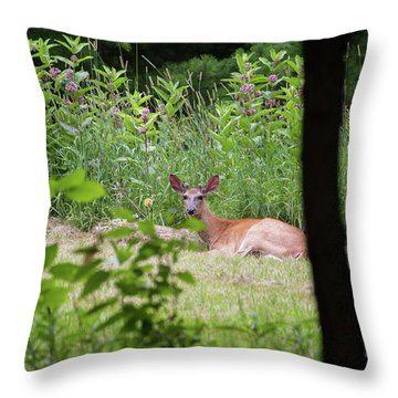 Del-1 Throw Pillow