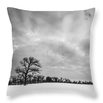 Throw Pillow featuring the photograph Delaware Park Winter  Meadow by Chris Bordeleau