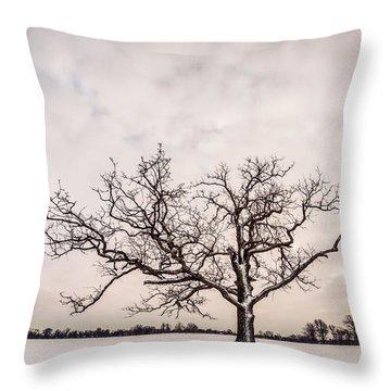 Throw Pillow featuring the photograph Delaware Park Winter Oak - Color by Chris Bordeleau