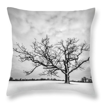 Throw Pillow featuring the photograph Delaware Park Winter Oak - Square by Chris Bordeleau