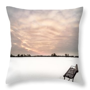 Throw Pillow featuring the photograph Delaware Park Winter Solace by Chris Bordeleau