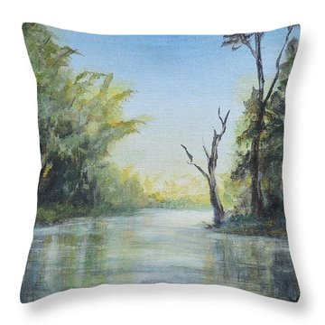 Delaware River  Throw Pillow
