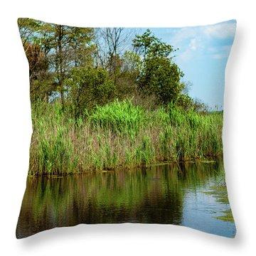 Delaware Waterway Throw Pillow