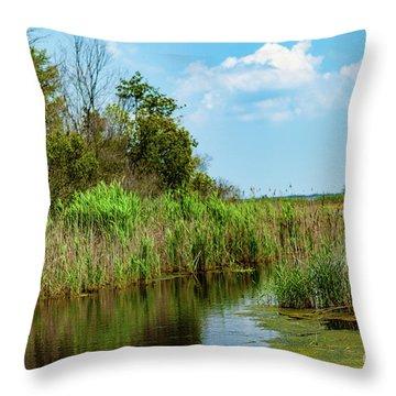 Delaware Wetlands Throw Pillow