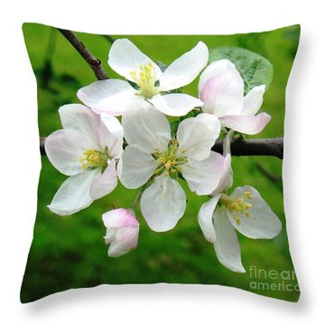 Delicate Apple Blossoms Throw Pillow