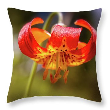 Delicate Beauty Throw Pillow
