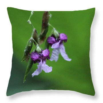 Throw Pillow featuring the photograph Delicate Blooms Of The Giant Alligator Flag by Barbara Bowen