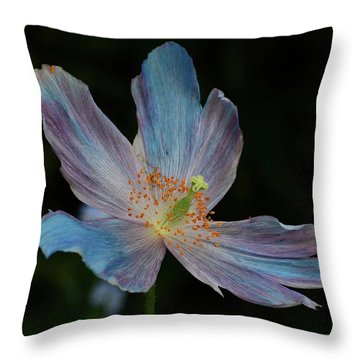 Delicate Blue Throw Pillow