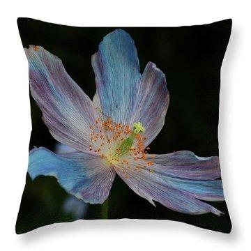 Delicate Blue Throw Pillow
