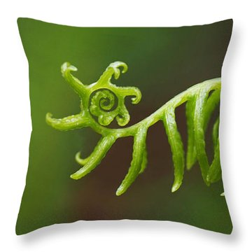 Delicate Fern Frond Spiral Throw Pillow by Rona Black