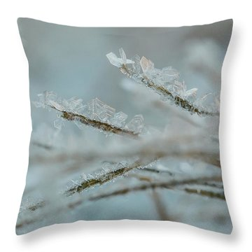 Delicate Morning Frost  Throw Pillow