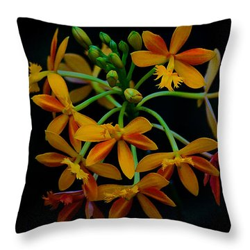 Delicate Orchid Display Throw Pillow