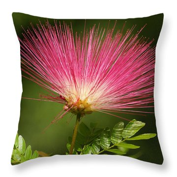 Delicate Pink Bloom Throw Pillow