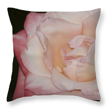 Delicate Pink Rose Throw Pillow by Debra Crank