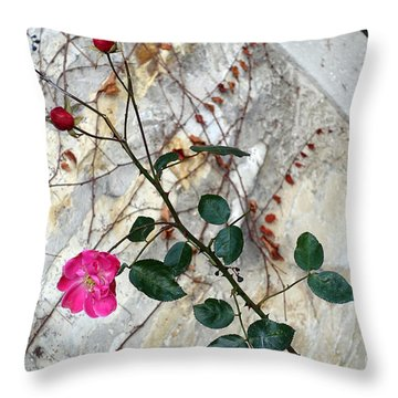Delicate Rose In December Throw Pillow