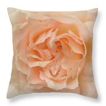 Delicate Rose Throw Pillow by Jacqi Elmslie