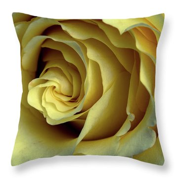 Delicate Rose Petals Throw Pillow