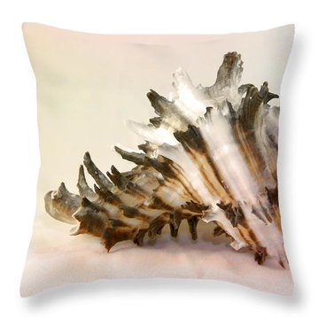 Delicate Shell Throw Pillow