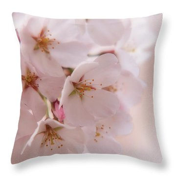 Delicate Spring Blooms Throw Pillow