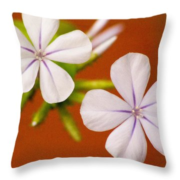 Delicate Stars 1 Throw Pillow