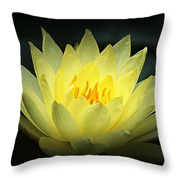 Delicate Water Lily Throw Pillow by Lori Seaman