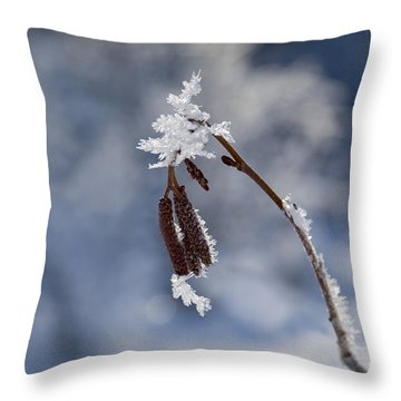 Delicate Winter Throw Pillow by Mike  Dawson