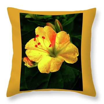 Delicate Yellow Flower Throw Pillow