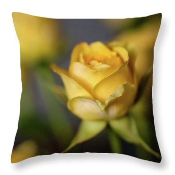 Delicate Yellow Rose  Throw Pillow by Terry DeLuco