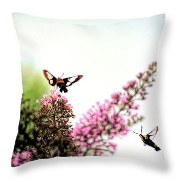 Throw Pillow featuring the photograph Delight And Joy - Hummingbird Moths In Flight by Kerri Farley